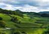Agricultural Plot/Land